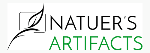 Natures Artifacts